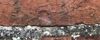 fingerprint of enslaved craftsman on chimney bricks