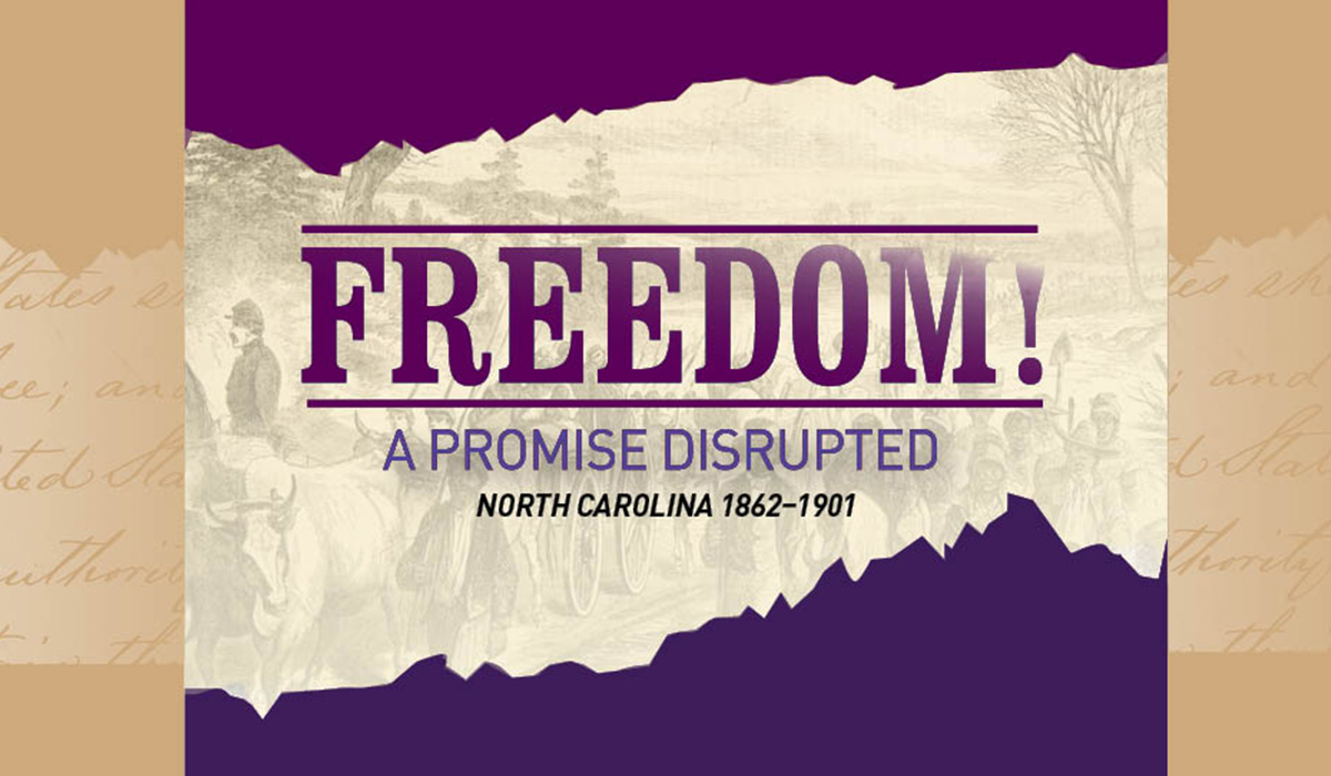 "The logo for our exhibit, ""Freedom: A Promise Disrupted."""