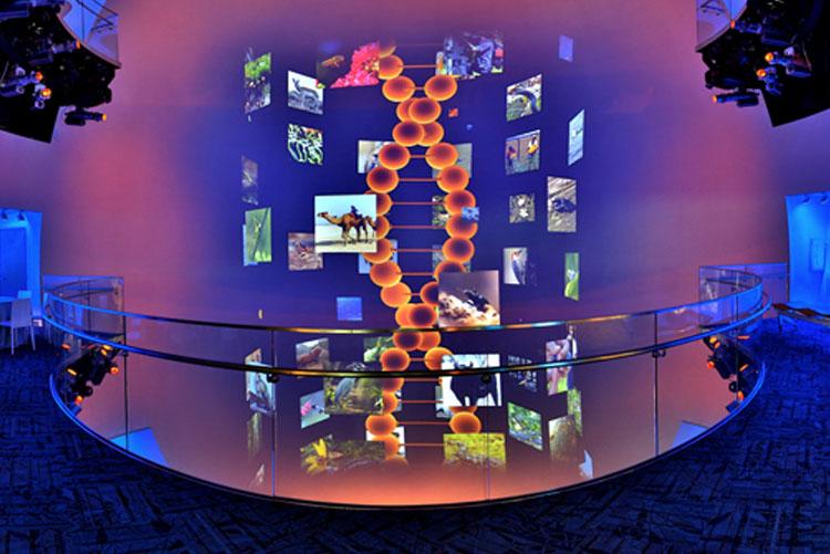 Museum Of Natural History Internships Summer