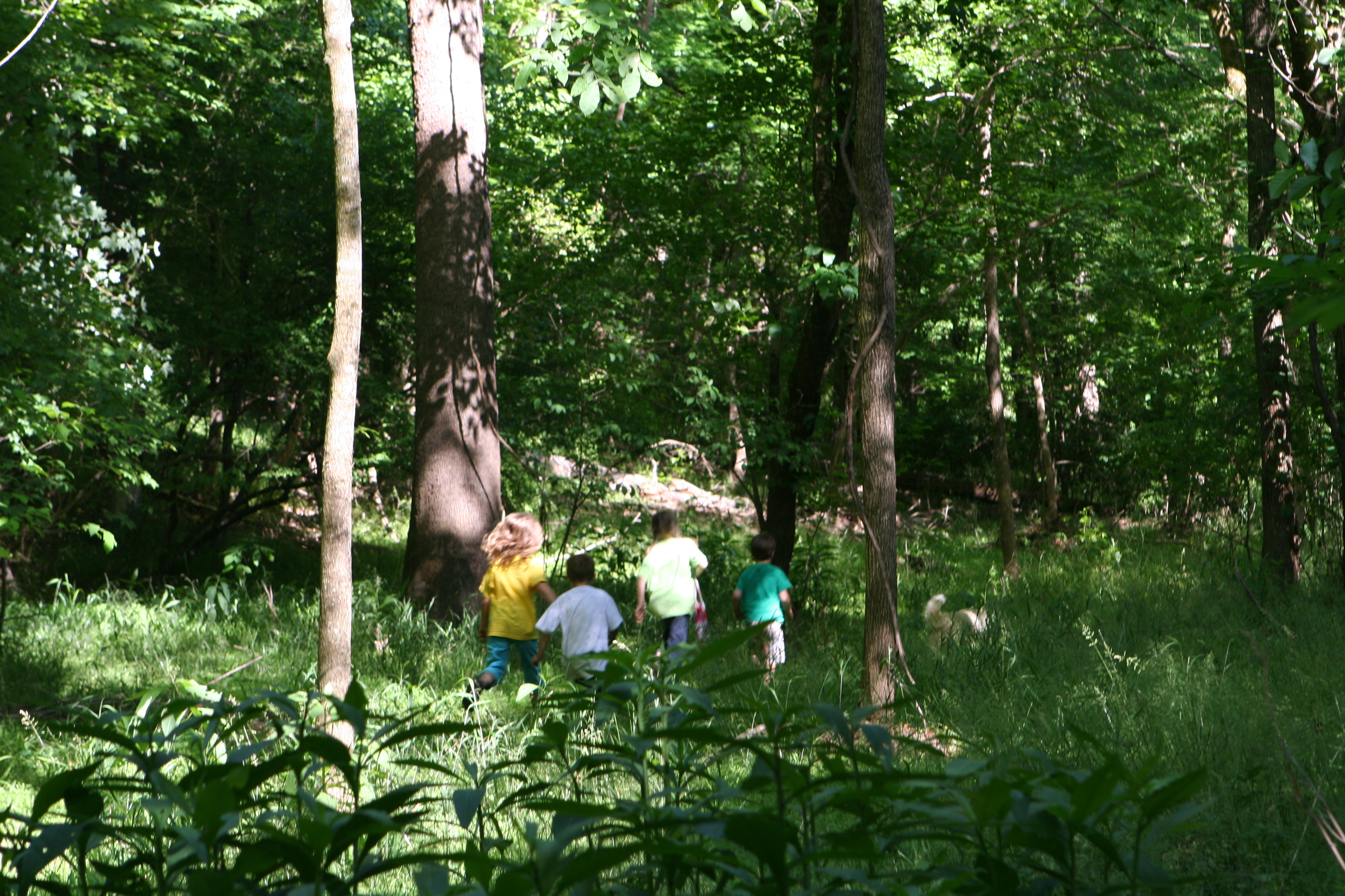 Haw River Floodplain Forest - Children at Play