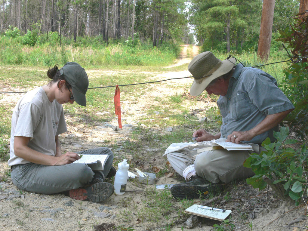 Insect Sampling and Identification by Bruce Sorrie
