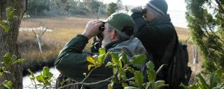 Birding at Theodore Roosevelt Natural Area by Misty Buchanan