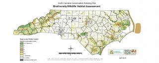 Biodiversity and Wildlife Habitat Assessment
