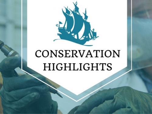 Conservation Highlights