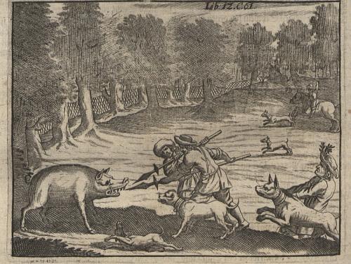 Pig hunting.