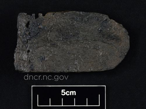 Shoe fragment from the QAR site
