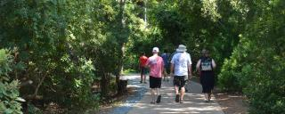 Group touring and walking the paths at Roanoke Island Festival Park