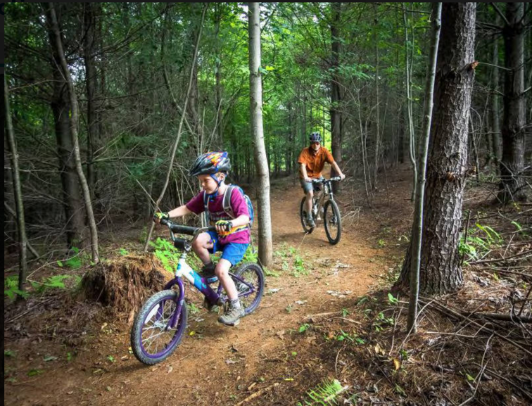 Picture of adult and child biking on a trail in the woods.