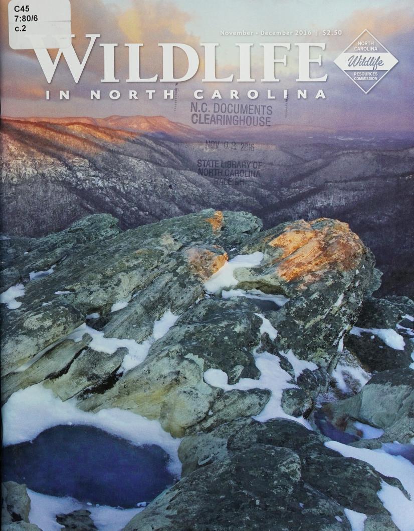 Cover of Wildlife in North Carolina from November-December 2016, volume 80, issue 6