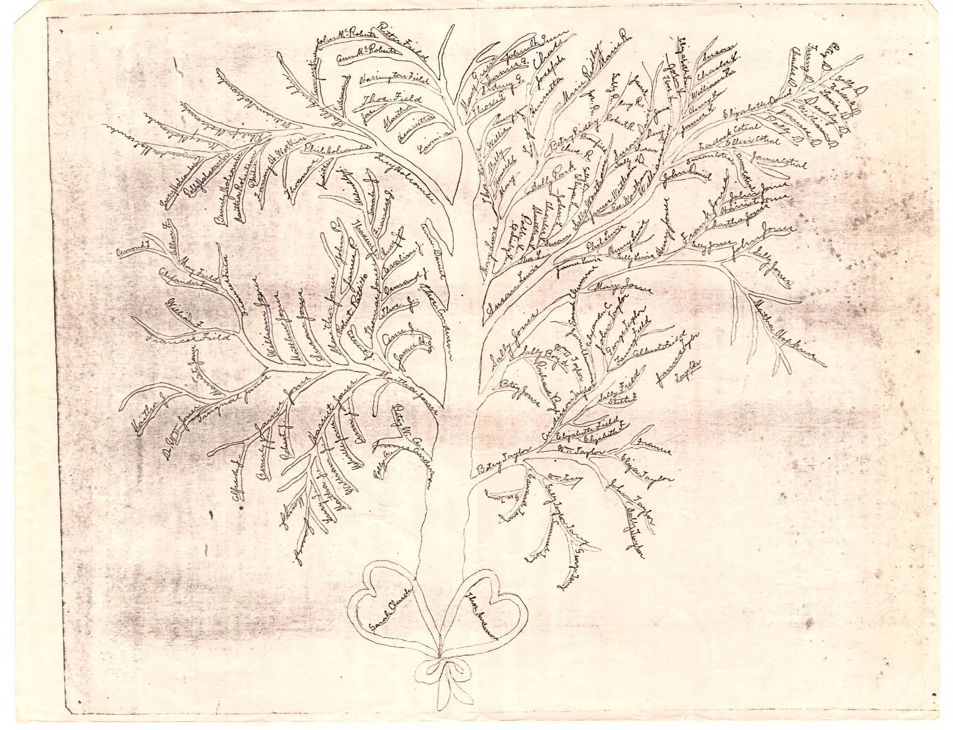 Drawing of a Genealogical Tree