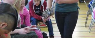 Some of the students are hesitant to touch the snake the presenter is taking around the room.