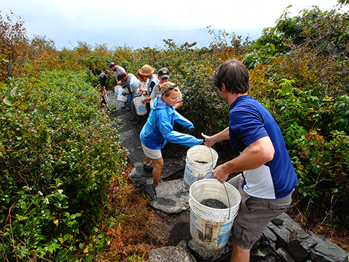 Volunteers work together at Elk Knob State Park