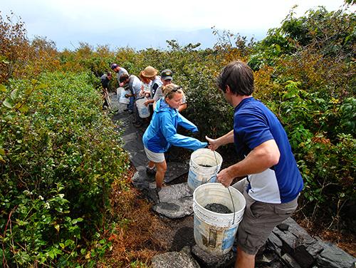 Volunteers work together at Elk Knob State Park