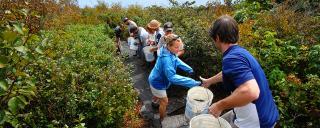 Volunteers at Elk Knob State Park