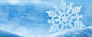 Snow flake winter scene