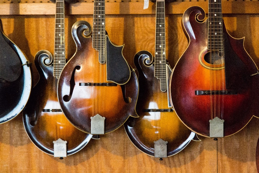 Instruments at N.C. Heritage Awardee Tony Williamson's shop, Mandomania
