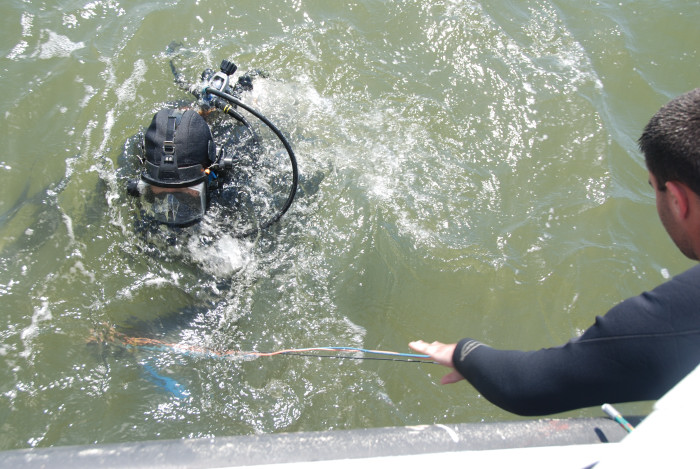 Divers take down electrodes to attach to cannon for in situ monitoring