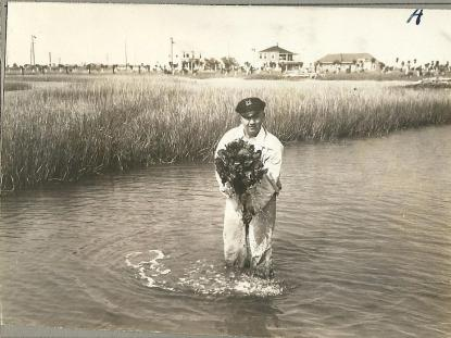 Carteret County oyster farmer