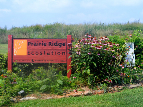 A sign wecloming visitors to Prairie Ridge Ecostation