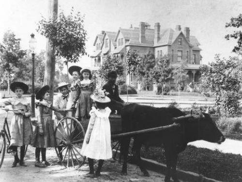An Oxcart in Front of the Executive Mansion