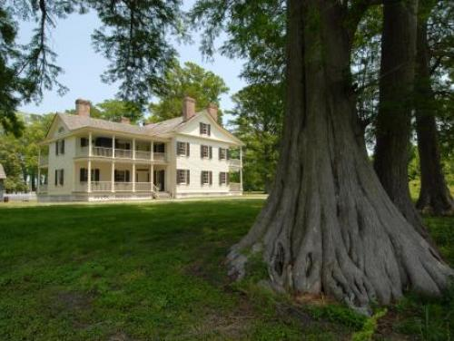 The Stately Collins Plantation House at Somerset Place