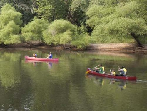 Canoeing at Cliffs of the Neuse State Park