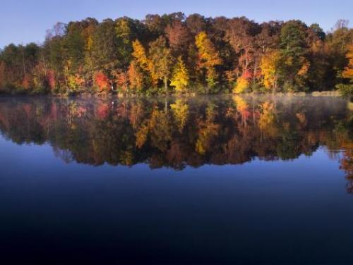 Fall foliage at Crowders Mountain State Park