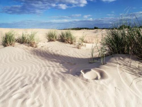 Jockey's Ridge State Parks Sand Dunes