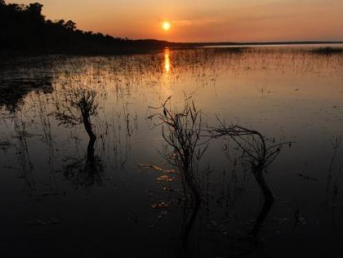The sun sets over Lake Waccamaw State Park