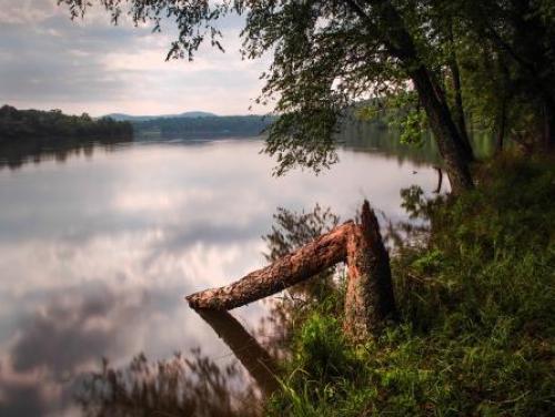 Lake Tillery at Morrow Mountain State Park