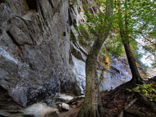 The base of 150-foot Raven Rock near Lillington