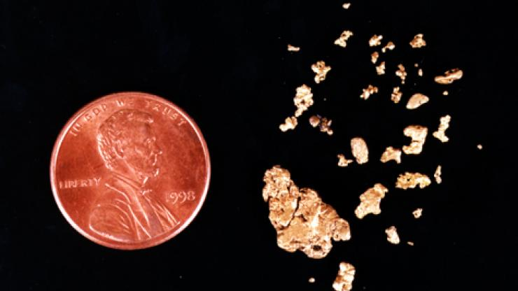 Gold dust recovered from Blackbeard's Queen Anne's Revnege