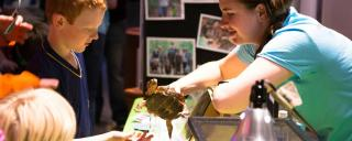 Touching a turtle at the N.C. Museum of Natural Sciences