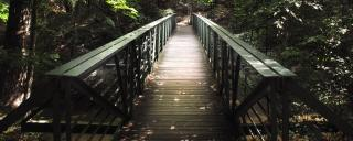A footbridge at Wiliam B. Umstead State Park in Raleigh