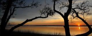A sunset over Carolina Beach State Park