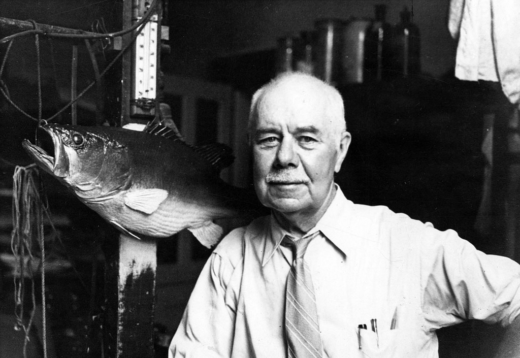 H. H. Brimley poses in the Museum of Natural Sciences in 1934.  Image from the State Archives
