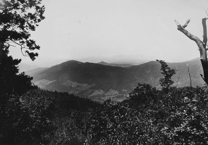 A scenic view of Mount Mitchell, circa 1911.
