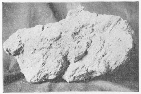 The nugget found in April 1896. Image from UNC-Charlotte.