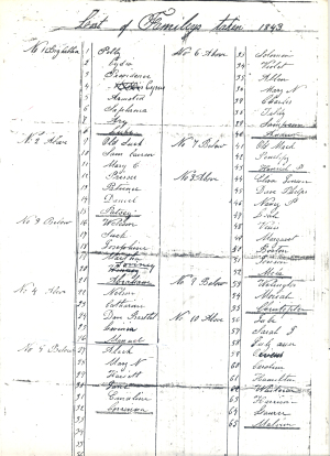 A 1843 slave inventory list from Somerset Place. Image from N.C. Historic Sites