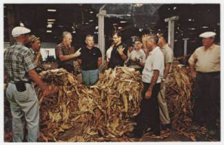 America's Largest Bright Leaf Tobacco Market in Wilson. Image from the North Carolina Collection at UNC-Chapel Hill