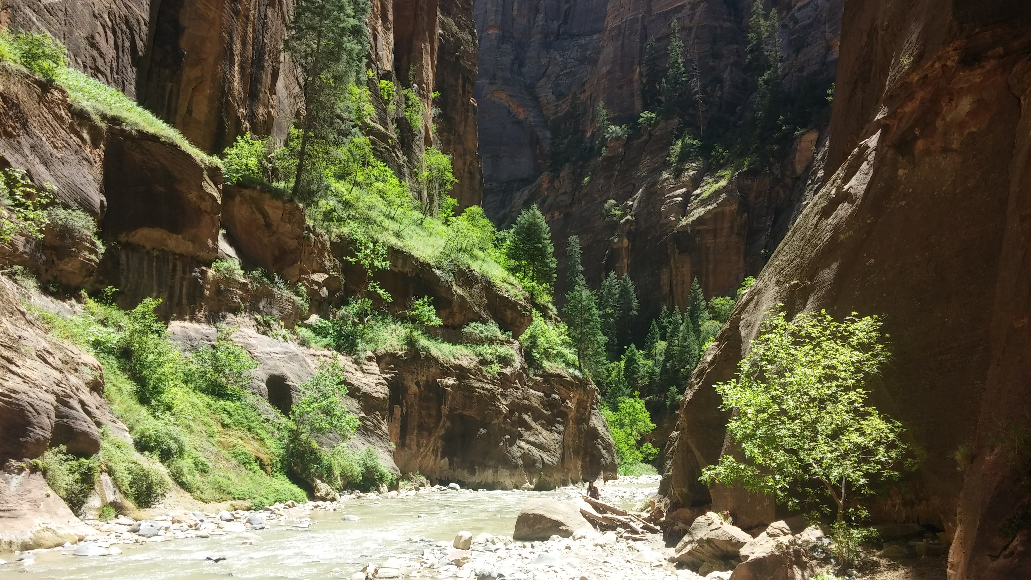 The Narrows of Zion National Park