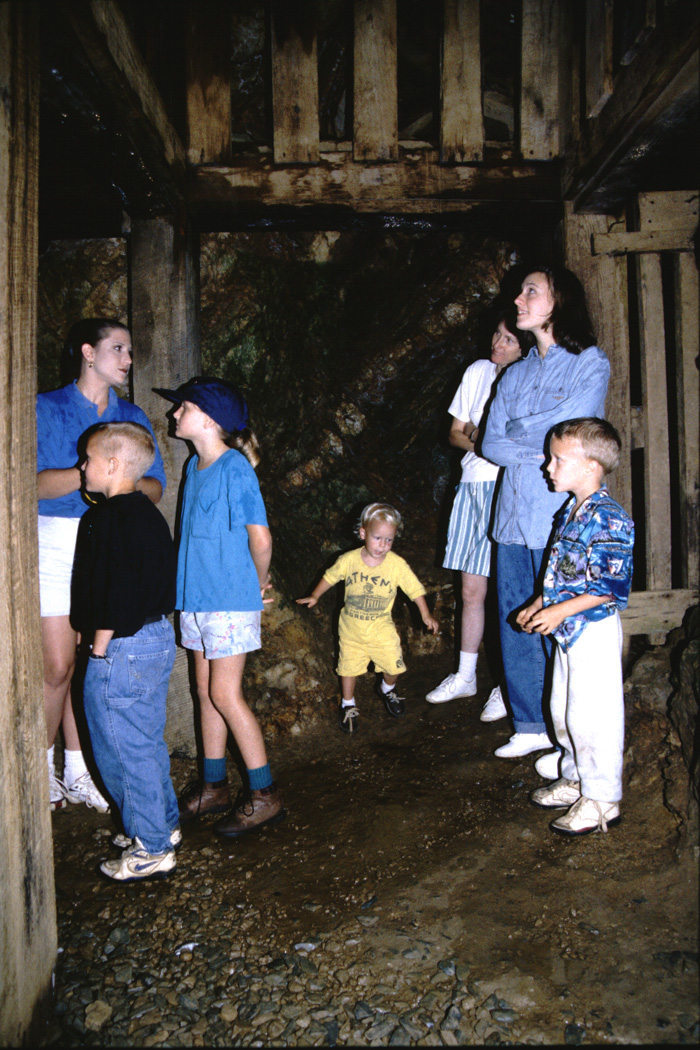 Family in a gold mine