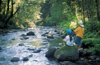 Two kids viewing a stream