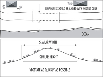 Illustration showing proper dune alignment