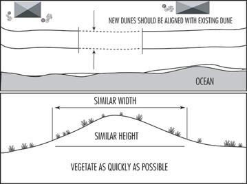 Illustration showing proper dune alignment