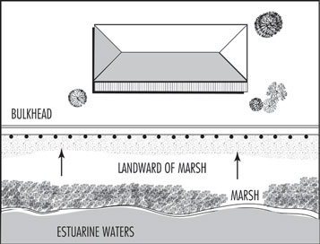 Illustration showing bulkhead placed landward of marsh
