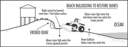 Illustration of beach bulldozing