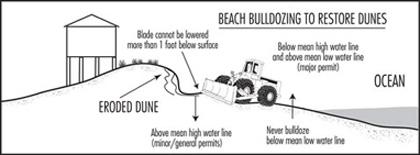 Illustration of beach bulldozing
