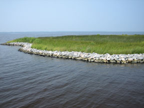 Marsh Toe Revetment Photo