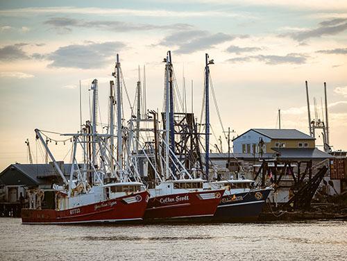 CFRF Program Shrimp Boats at the Dock